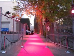 Pink Carpet