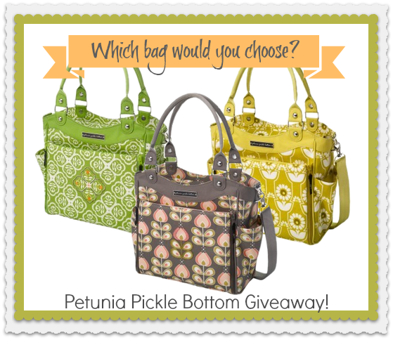 Petunia Pickle Bottom Diaper Bags City Carry All