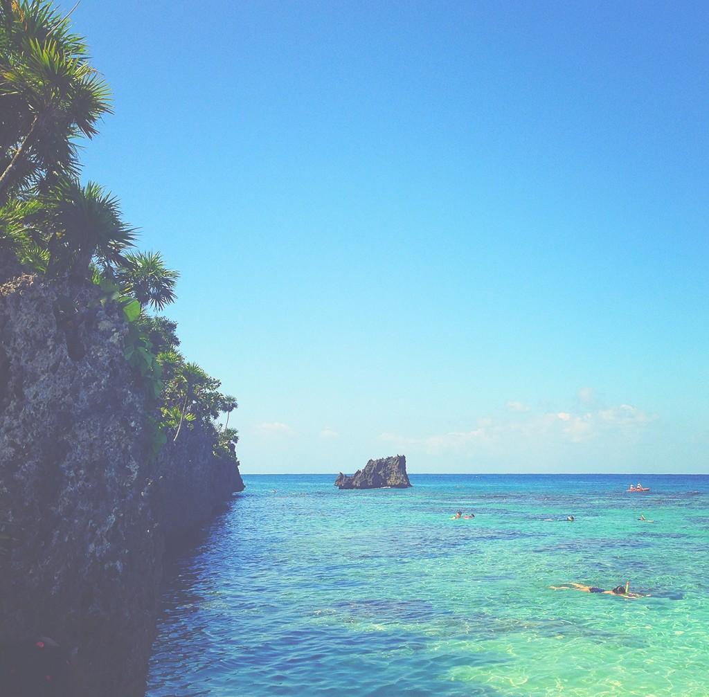 Wood Camera - Island of Roatan 2