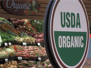 organic_foods_20130226022855_320_240