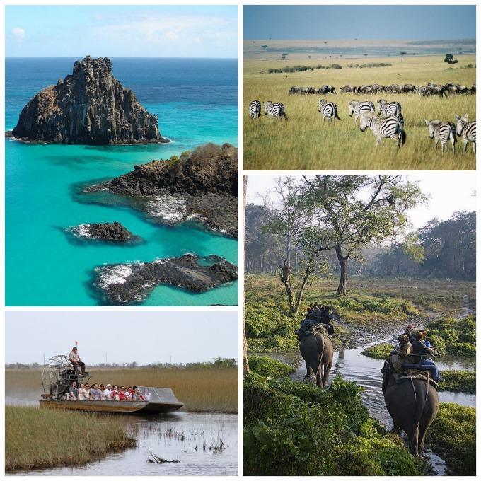 5 ways to be an eco tourist