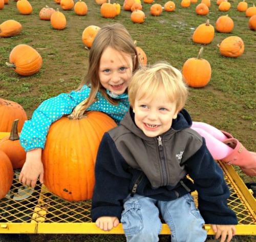 Pumpkin Patch Kids SSM