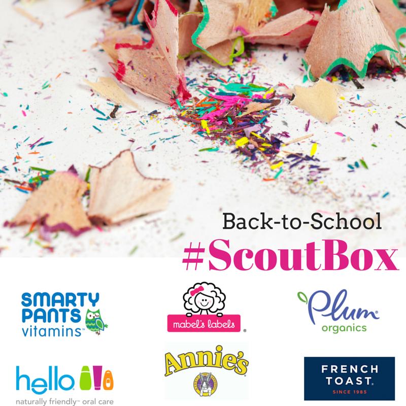 Scout Box (1)