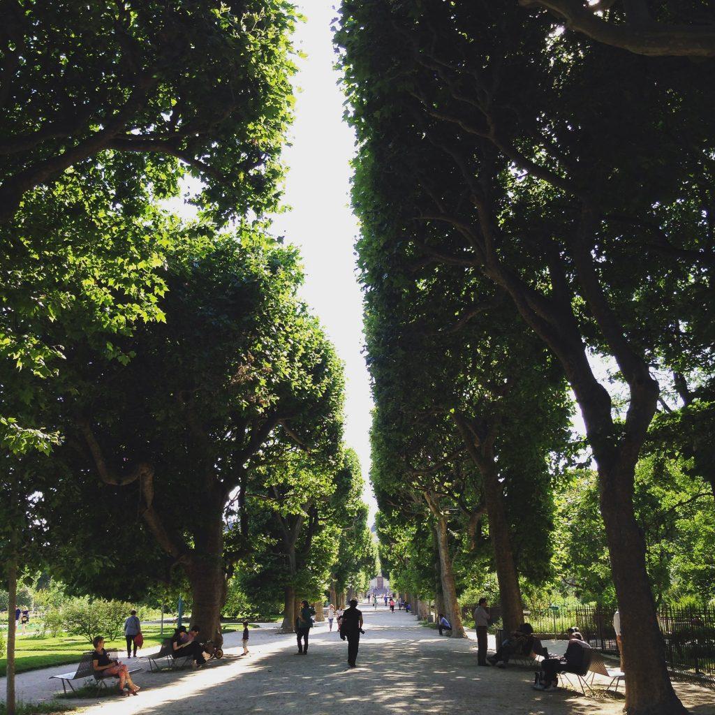 Jardin de Plantes