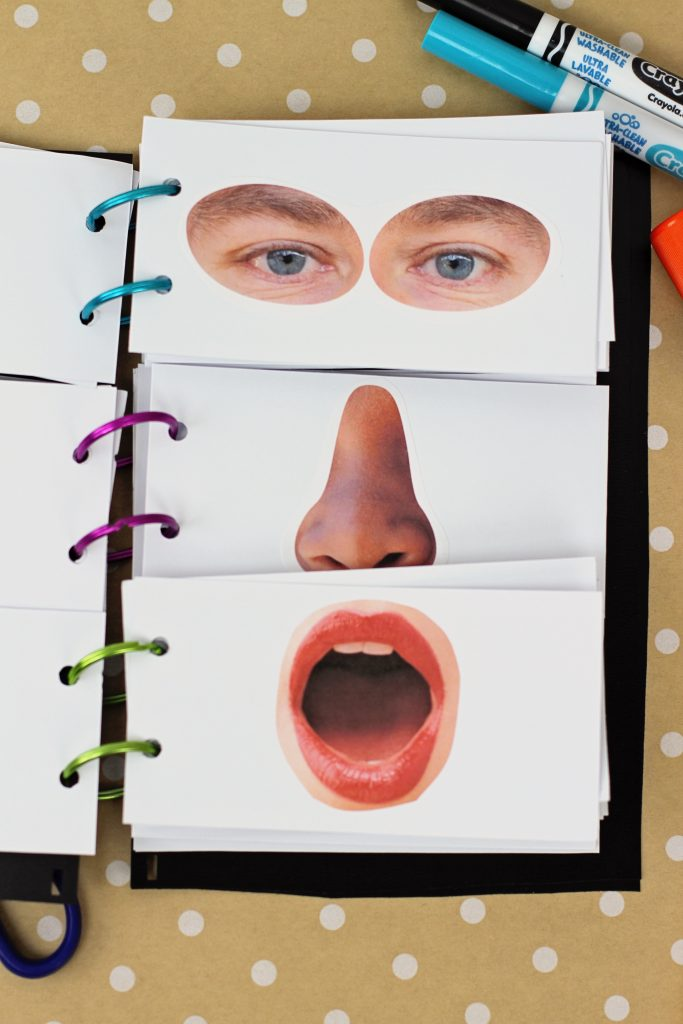 creating your own funny faces flip book