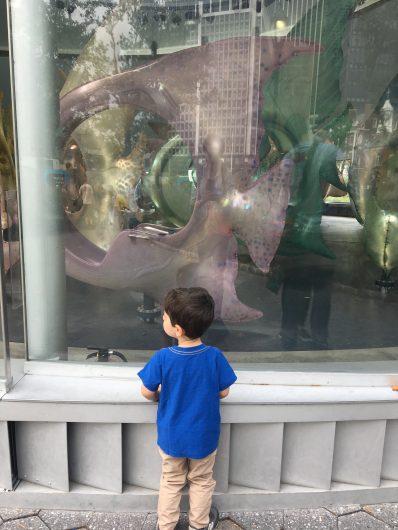 Battery Park SeaGlass Carousel
