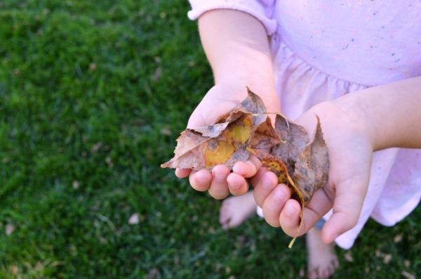 8 Great Leaf Crafts to Try this Fall